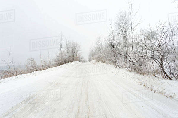 Road during winter blizzard; Caledon, Ontario, Canada Royalty-free stock photo