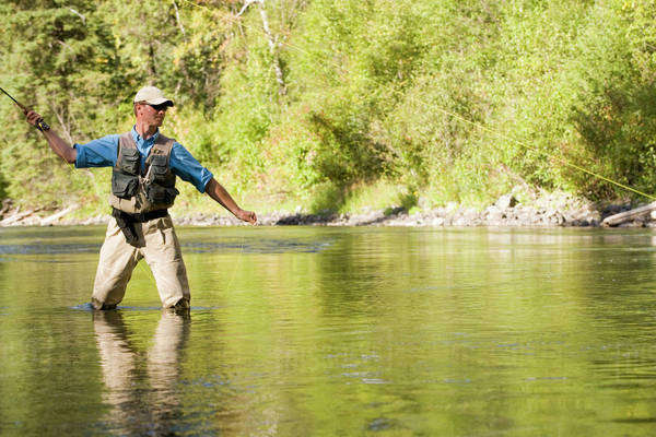 Fly-Fishing Guide, Russ Trand, Fly-Fishing On Tributary Of Elk River Near Fernie, Elk Valley, East Kootenays, British Columbia, Canada. Royalty-free stock photo