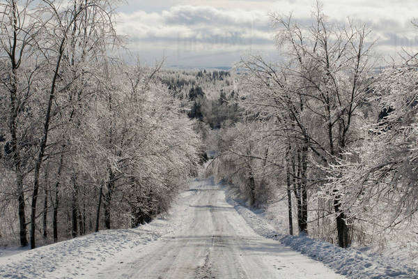 Road in winter after an ice storm; Foster, Quebec, Canada Royalty-free stock photo
