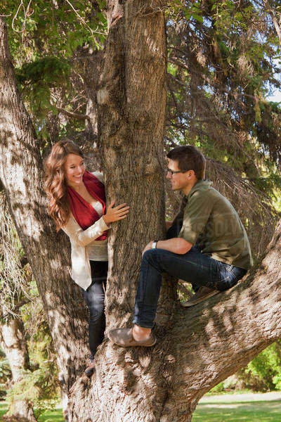 Newlywed Couple In A Large Tree In A Park; Edmonton, Alberta, Canada Royalty-free stock photo