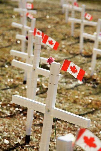 White Crosses In A Field With Canadian Flags; Calgary, Alberta, Canada Royalty-free stock photo