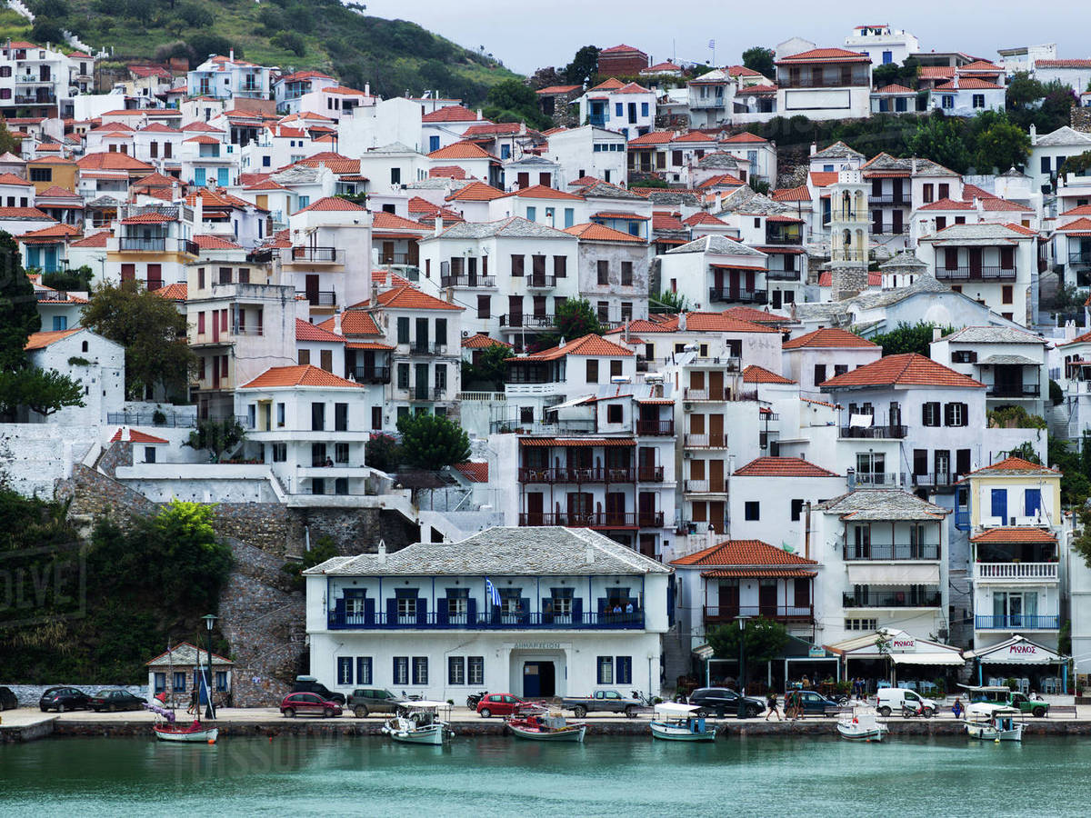 houses on the hillside and boats moored along the waterfront on a