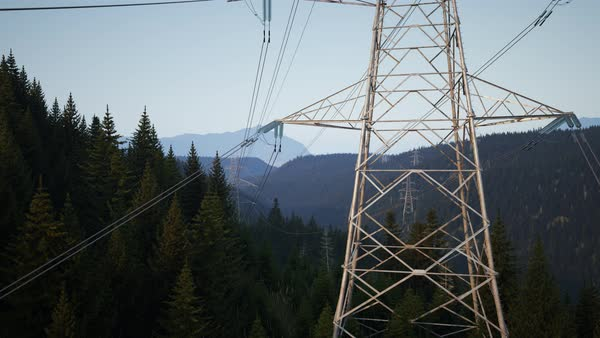 Camera moving upwards along the power lines and tower during whole day timelapse in the forest Royalty-free stock video