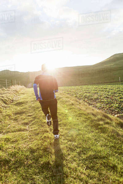Rear view of mid adult man jogging on grassy field during sunny day Royalty-free stock photo