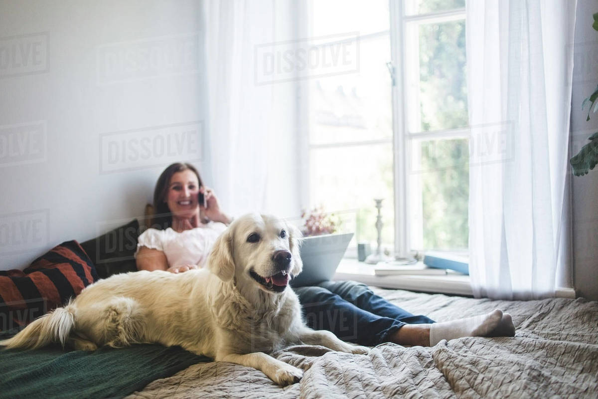 Dog resting with senior woman talking on mobile phone on bed at home Royalty-free stock photo