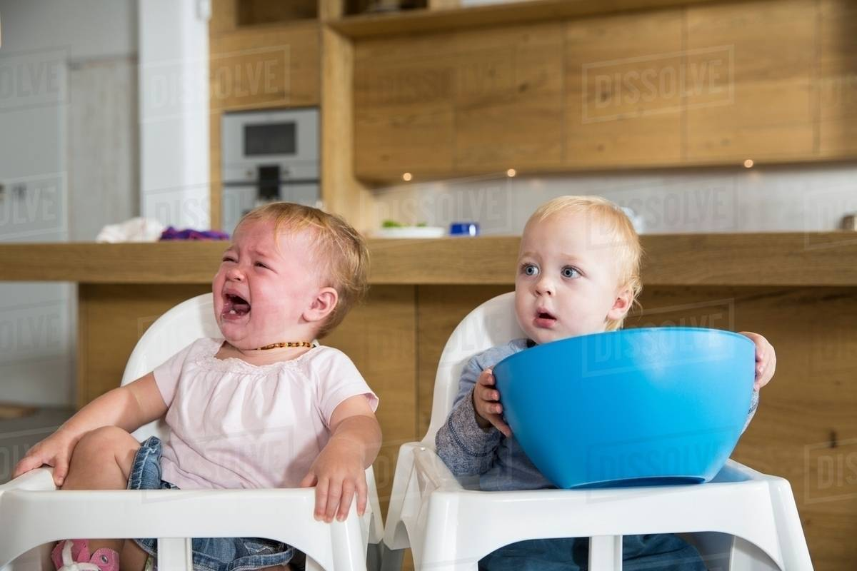 Male And Female Twin Toddlers In High Chairs Stock Photo Dissolve