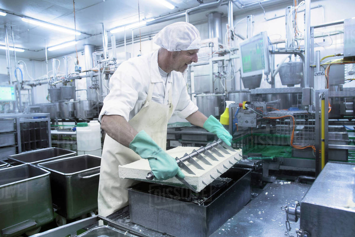 Male worker working in organic tofu production factory stock photo