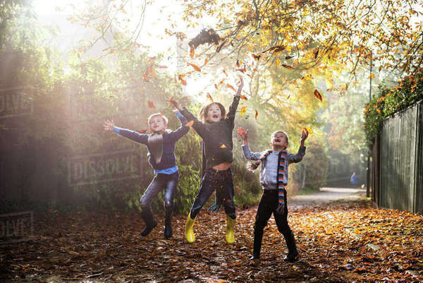 Three young boys, playing outdoors, throwing autumn leaves Royalty-free stock photo
