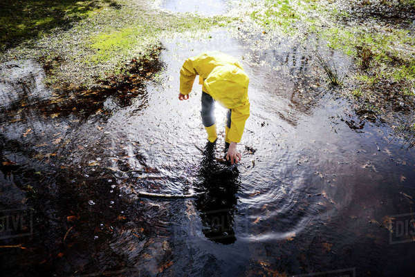 Boy in yellow anorak bending forward in park puddle Royalty-free stock photo