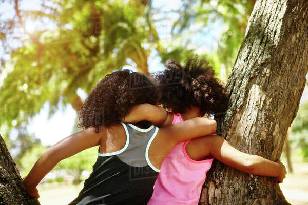 Two young sisters playing on tree. rear view Royalty-free stock photo