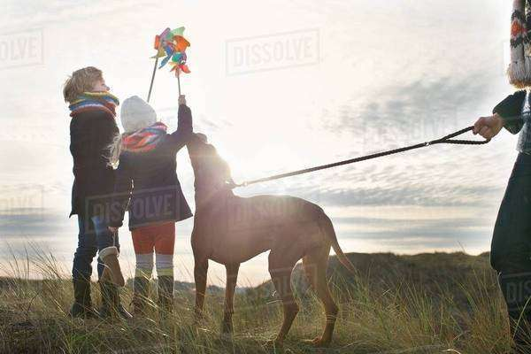 Mid adult man with son, daughter and dog at coast Royalty-free stock photo