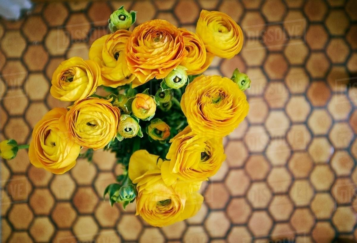 Overhead View Of A Bunch Of Yellow Roses Against Honeycomb Linoleum