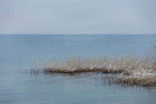 Wintery lake scene Royalty-free stock photo