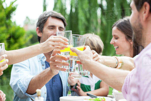 Family clinking glasses at outdoor gathering Royalty-free stock photo