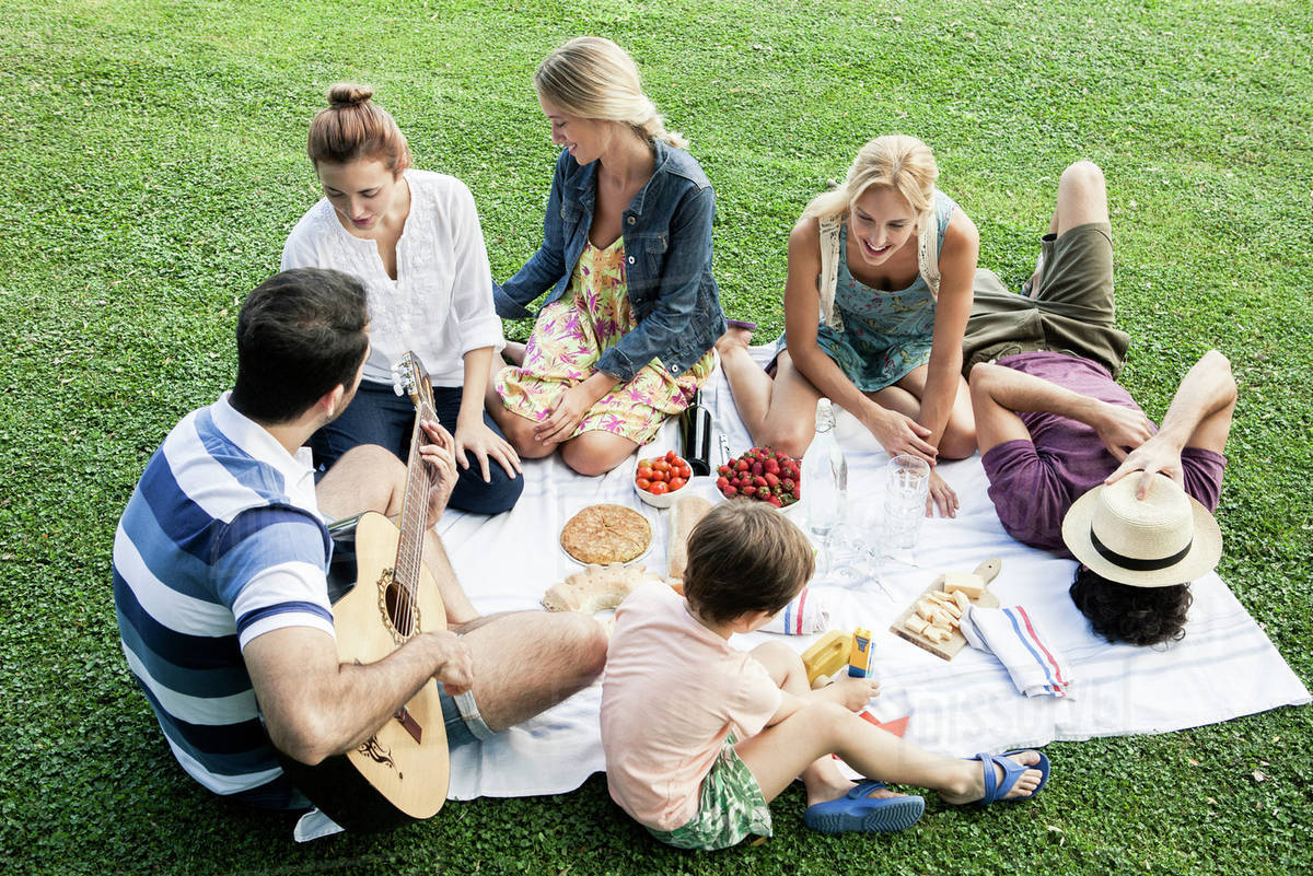 722dfbb7157d Summer picnic in the park with family and friends - Stock Photo ...