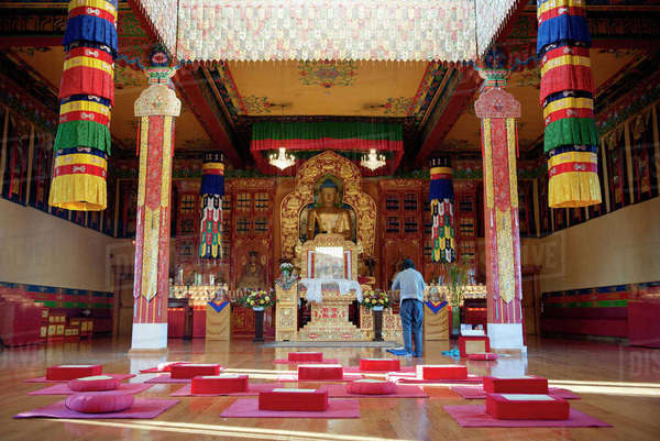 woodstock buddhist singles Buddhist diet vegetarian singles, free buddhist diet vegan dating,  i am a buddhist who is very spiritual and has lots of  living in woodstock, illinois,.