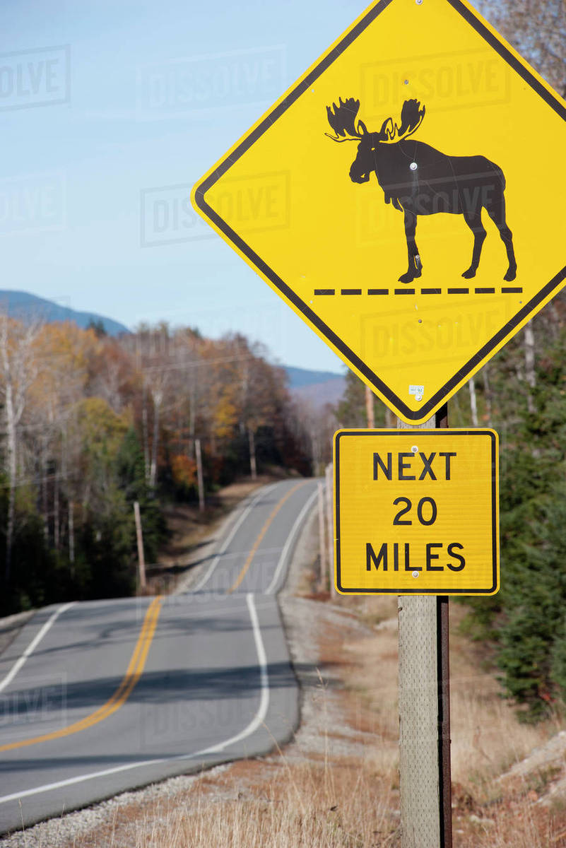 moose crossing sign along highway stock photo dissolve