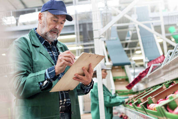 Manager with clipboard inspecting apples in food processing plant Royalty-free stock photo