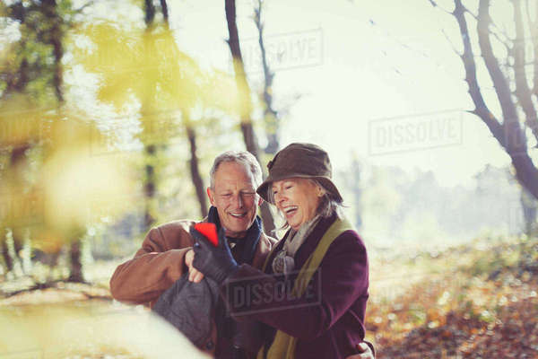Smiling senior couple using cell phone in sunny autumn park Royalty-free stock photo
