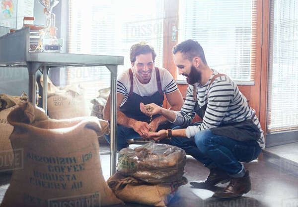 Male coffee roasters examining coffee beans Royalty-free stock photo