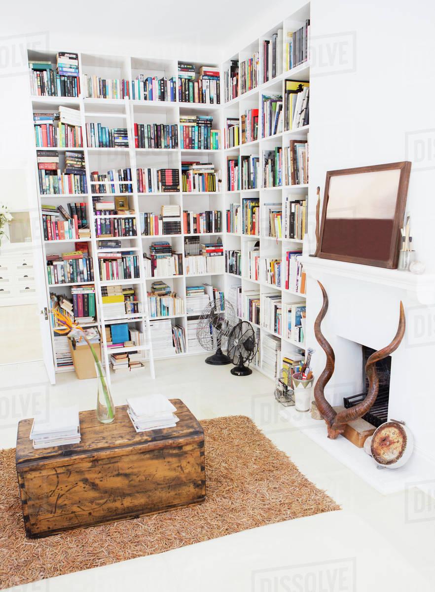 Bookshelves And Fireplace In Modern Living Room D985 5 774