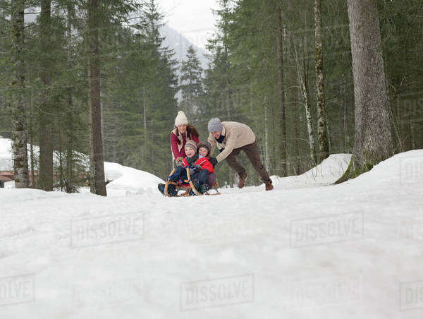 Family sledding in snowy woods Royalty-free stock photo