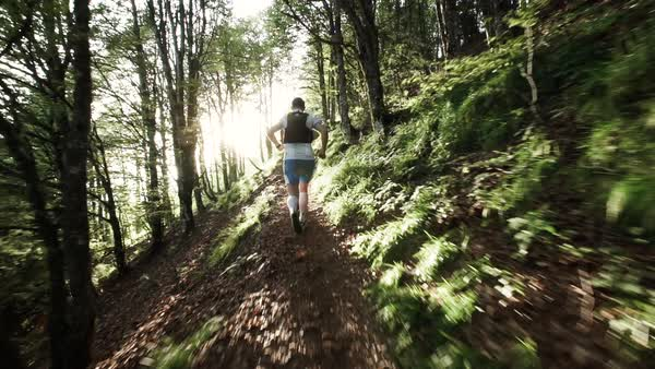 Slow motion shot of two men running in the woods Royalty-free stock video