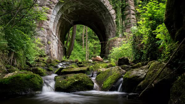 Scenic view of a stream flowing under arch bridge in forest Royalty-free stock video