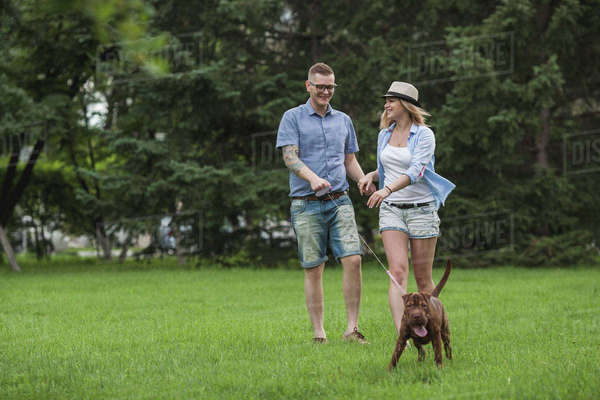 A young couple walking their Shar-pei/Staffordshire Terrier in a park Royalty-free stock photo
