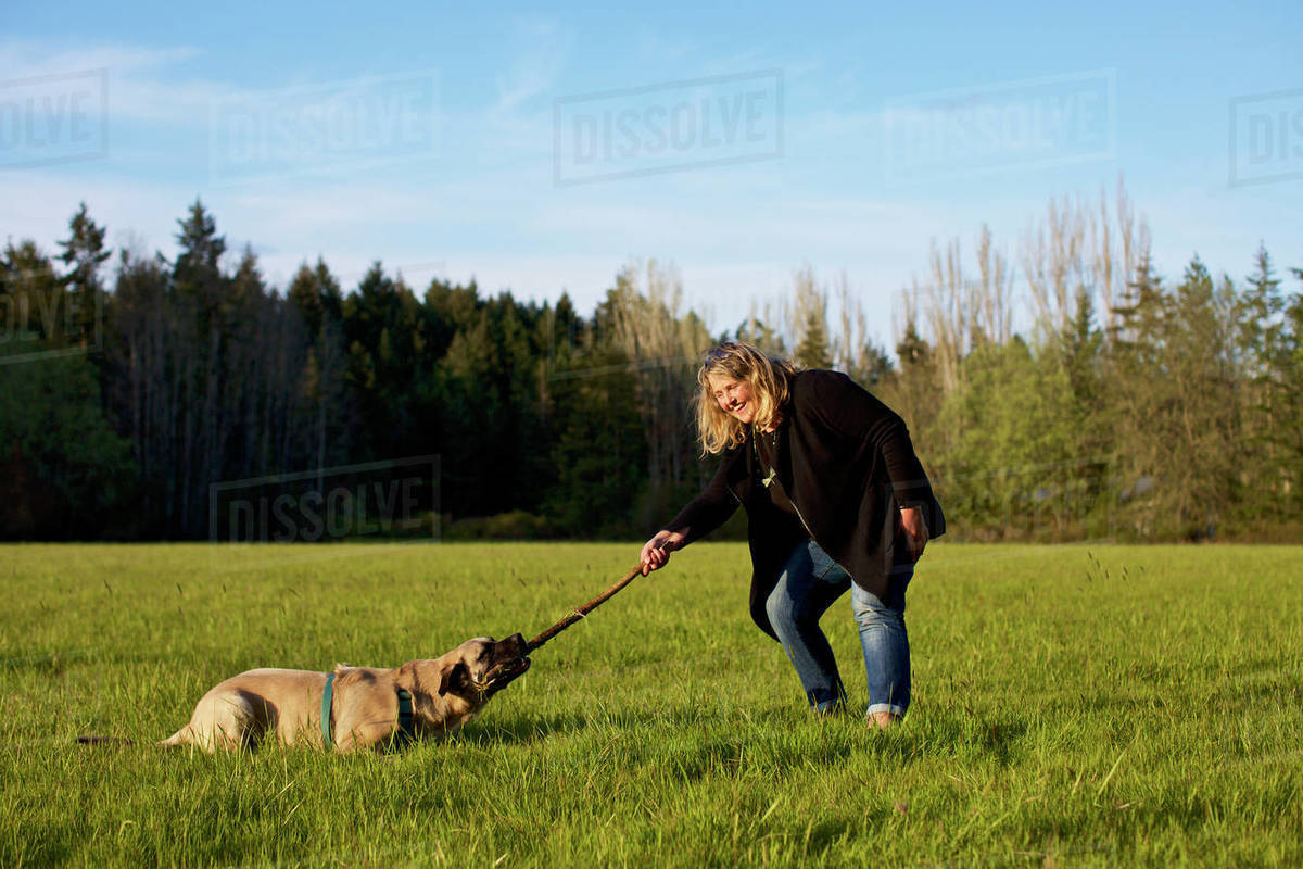 Woman and dog playing with stick in sunny rural field Royalty-free stock photo